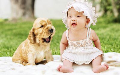 infant-3858285_1920